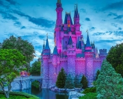 Disney Worlds Magic Kingdom (7)