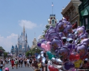 Disney Worlds Magic Kingdom (8)