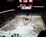 o-estadio-scotiabank-saddledome-1