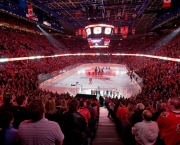 o-estadio-scotiabank-saddledome-5