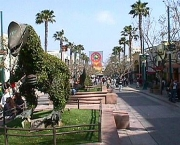 santa-monica-california-6