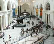 the-field-museum-3